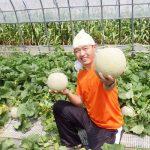 北海道・中富良野の寺坂農園さんって知ってますか?凄い美味しい富良野メロンを育てる農家さんです!