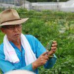 札幌市の都市型農業を視察!
